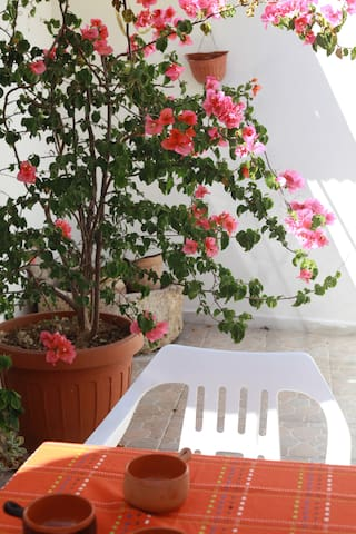 home holiday in Salento