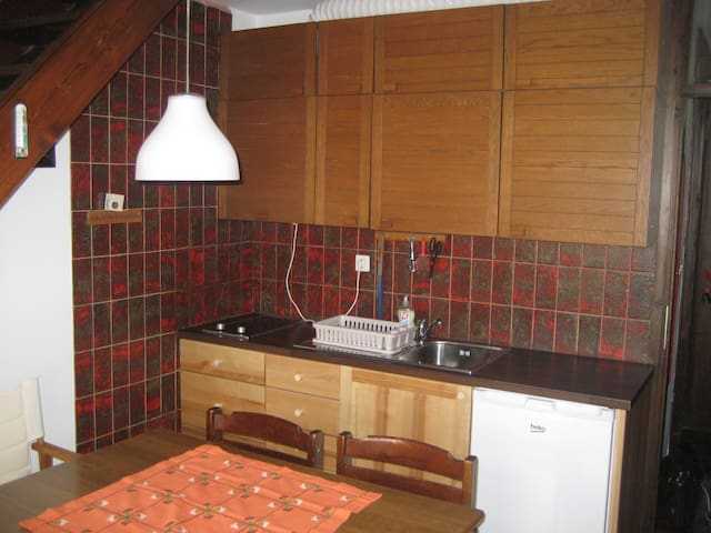 cosy flat in great city, 3 minutes to the centre - Bovec - Appartement
