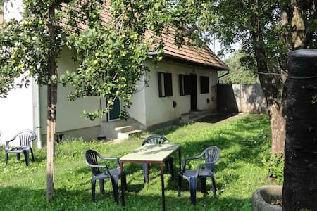 Transylvanian country village home - Vârghiș - Hus
