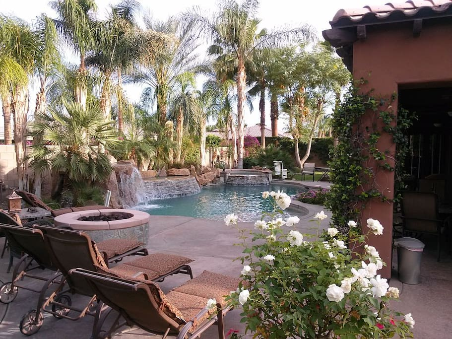 Beautiful Backyard & Pool - 4 Tanning Chairs + lots of additional seating. Spectacular salt-water pool, waterfall and waterfeatures. The house also  has a pool or deck umbrella, pool floats, swim googles, kid's swim vests, pool toys, pool towels for 16, etc.