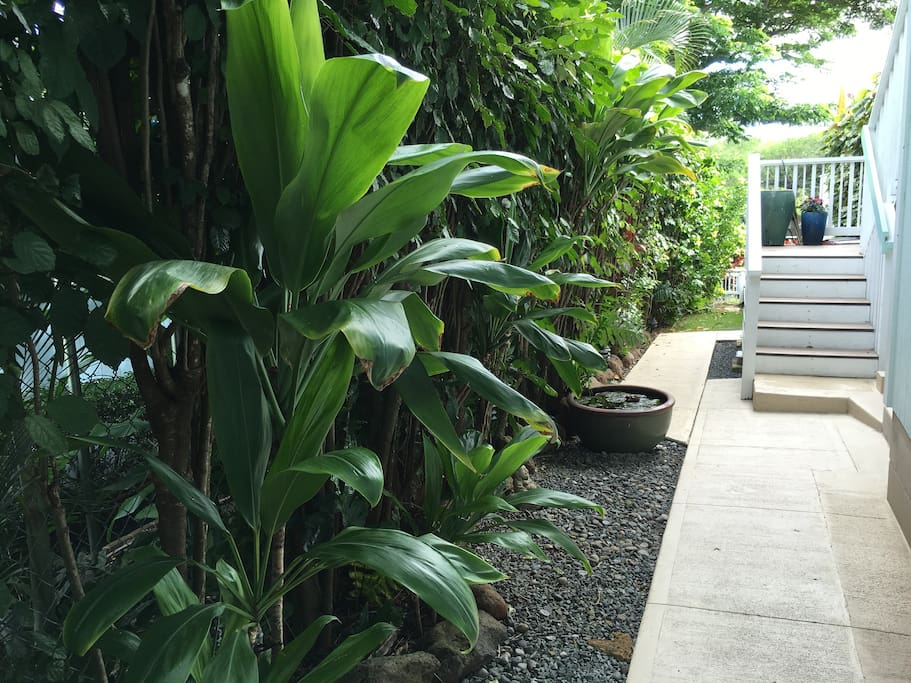 Lush landscaped tropical yard throughout property