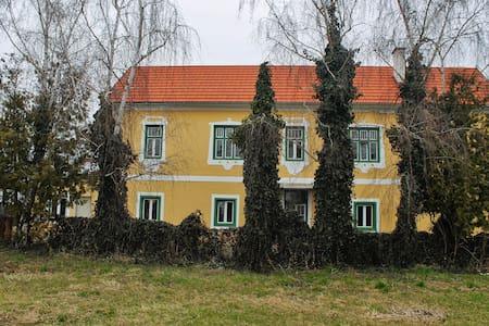 """Urlaub am """"Maierhof"""" - Haus WABENE - Deutsch-Schützen / Eisenberg - Дом"""