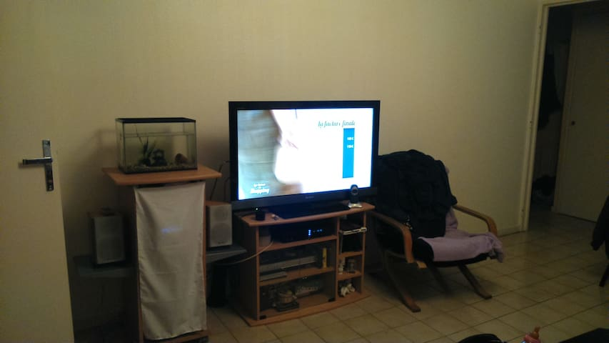 T2 42m² Sur Nantes Beaulieu - Nantes - Apartment