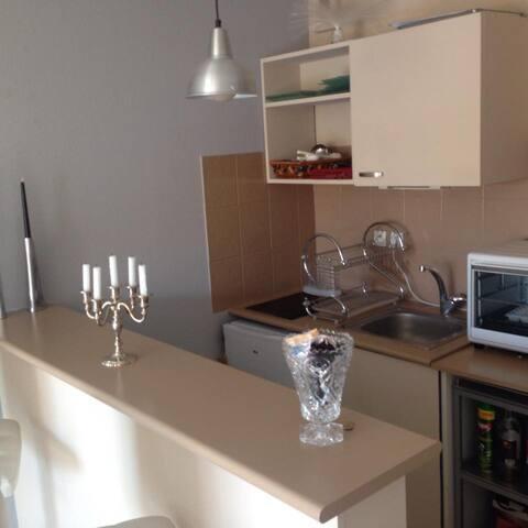 Cuisine - Four - Frigo - Plaques induction - Bar - Lave vaisselle - micro onde