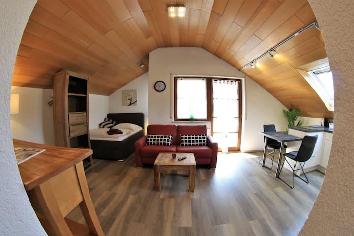Nr. 1  tolle Dachwohnung für 1-2 Pers. n. Weinheim