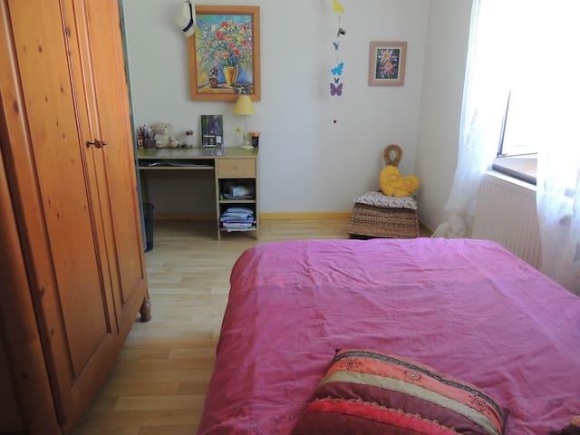 Chambre dans agréable duplex au pied des Pyrénées - Villeneuve-de-Rivière - Bed & Breakfast