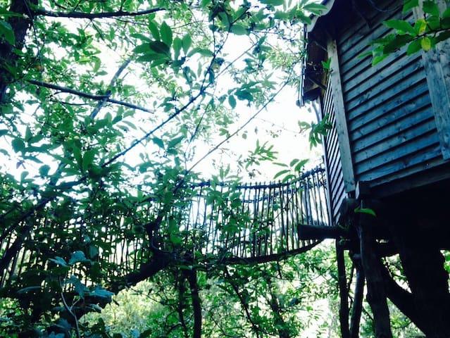 Cabane dans les arbres - Saint roman de codieres  - Treehouse