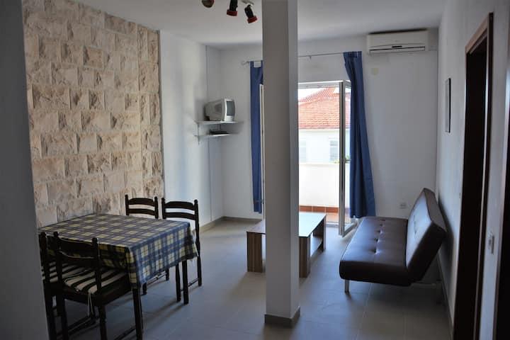 Apartment Tepic 2+1 b