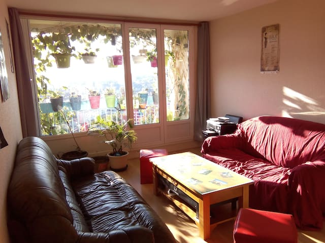 Bedroom/lounge in corent - Limoges - Daire