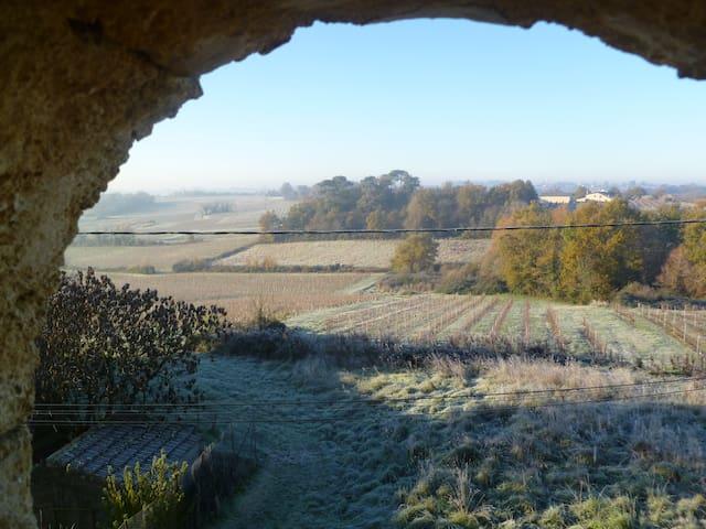 chambres dans vignoble bordelais - Soulignac - House