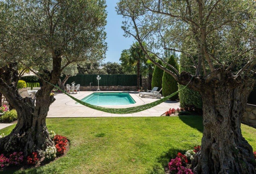 Alojamiento en la sierra con piscina climatizada for Piscina climatizada madrid