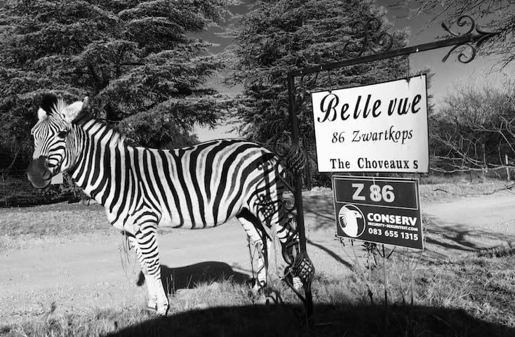 The Stables@Bellevue Farm Cradle Muldersdrift.