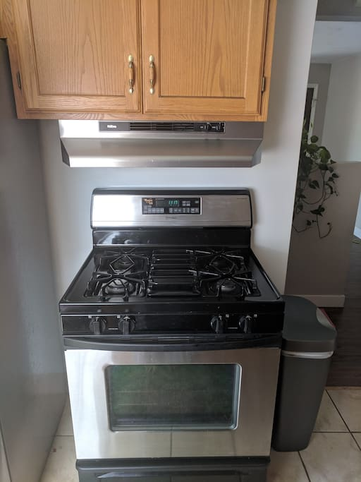 Gas oven and stove