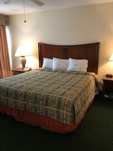 Affordale Hotel Villa near Disney #07718