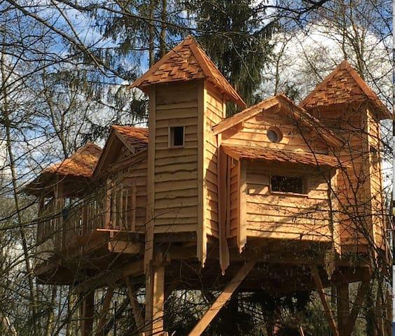 La Cabane SPA de l'Ile - proche de Paris - Orly-sur-Morin - Cabana en un arbre