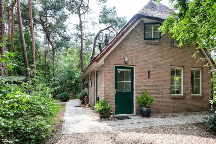Rustic Holiday Home in Beerze Overijssel with Lush Garden