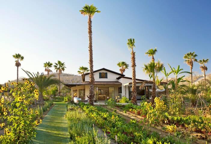 Luxury 3BR Flora Farm Cottage - San José del Cabo - House
