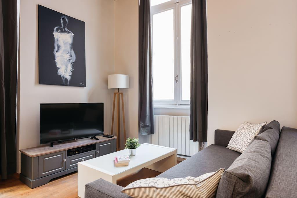 Comfy sofa and a flat screen TV