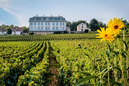45m2 appt Vineyard View in Chateau - Comblanchien - Apartmen