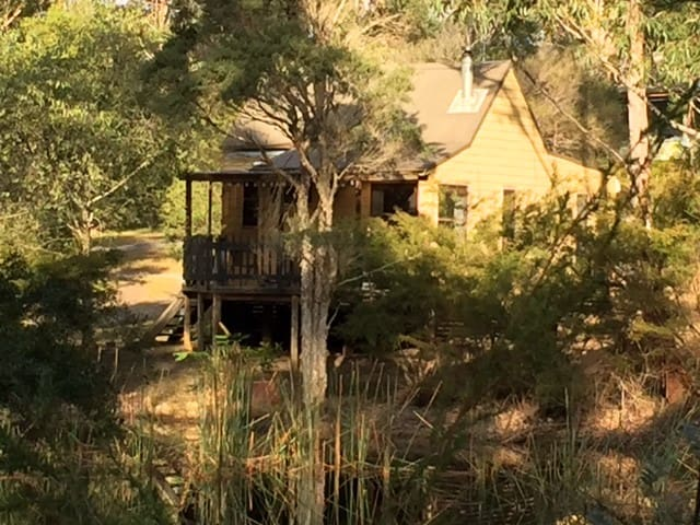 Billabong Cottage on 25 acres - Termeil - Cabin