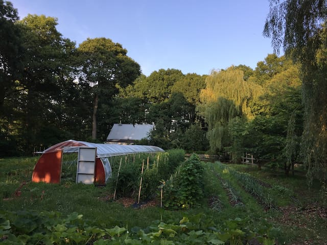 Coastal Organic Farm-15min to yale