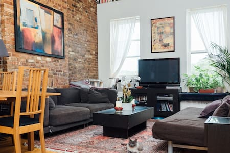 BK Heights Apartment for cat lovers - ブルックリン