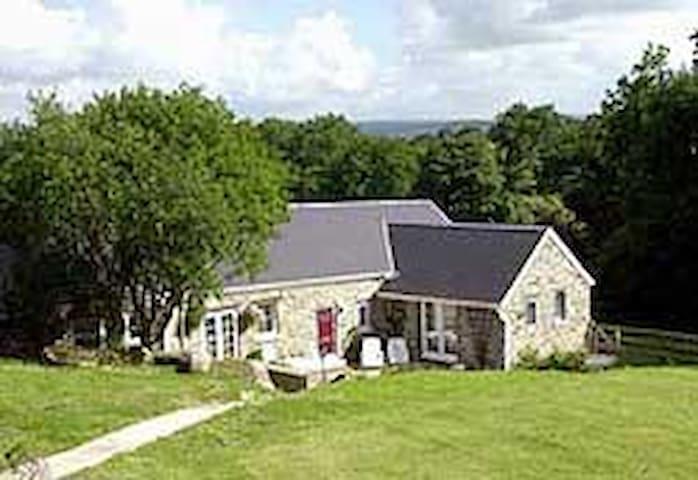 Fern Cottage - Tavernspite - Bungalow