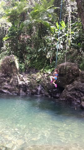 El Yunke Charco Frio. Amazing Nature Forest