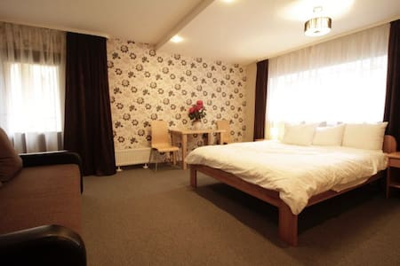 Amigo apartments in the respectable part of Riga - Riga - Bed & Breakfast