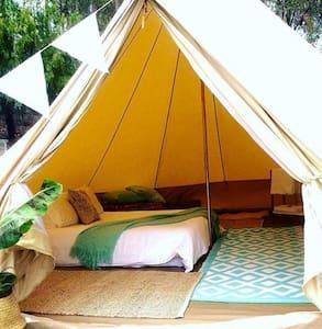 Luxury Camping set up for You! - Merimbula