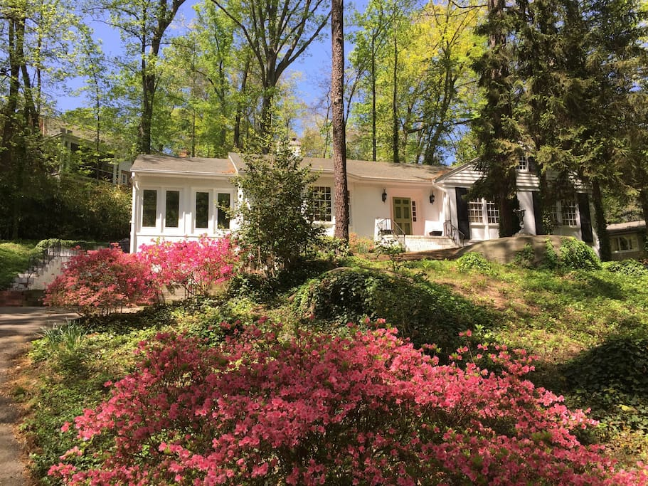 Ideal location for UCI! Charming light filled 3 bedroom home in convenient & picturesque South of Cary Street Road neighborhood. Plenty of room in drive for multiple cars, deadbolt locking garage to safely store your bikes and equipment. Lots of open to s