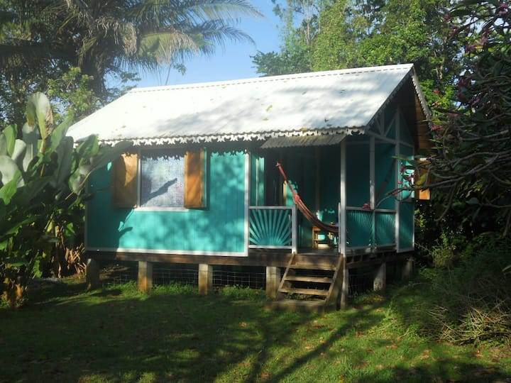 Caribbean-style Beachfront Cottage