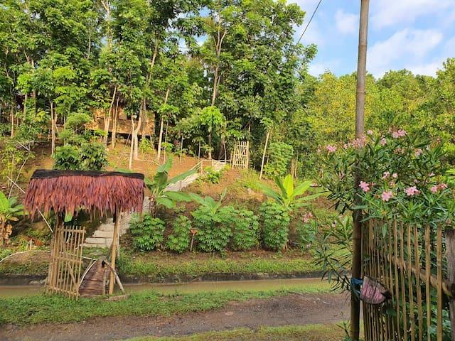 Bear Paw Tiny House 2 (Bambu &Wood Saung and Farm)