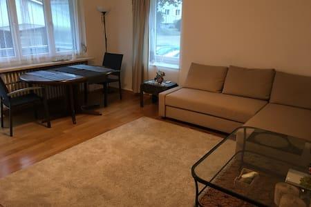 Schöne Wohnung für Erwachsene und Kinder. - Glattbrugg - Apartment