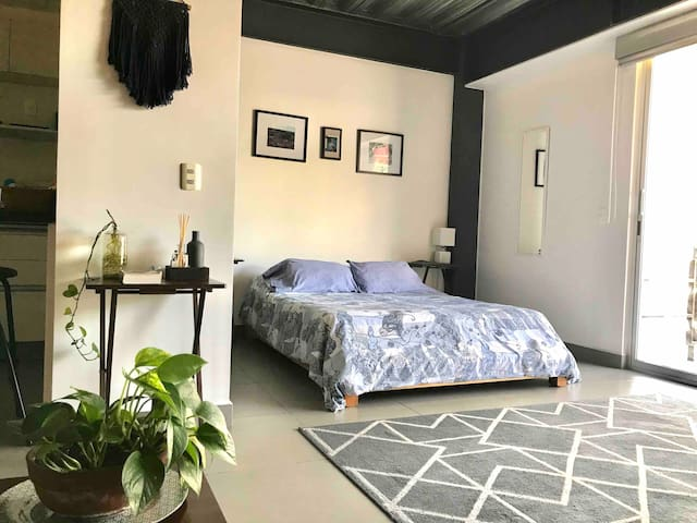 Cozy and clean Loft with roof garden, LaRoma Norte