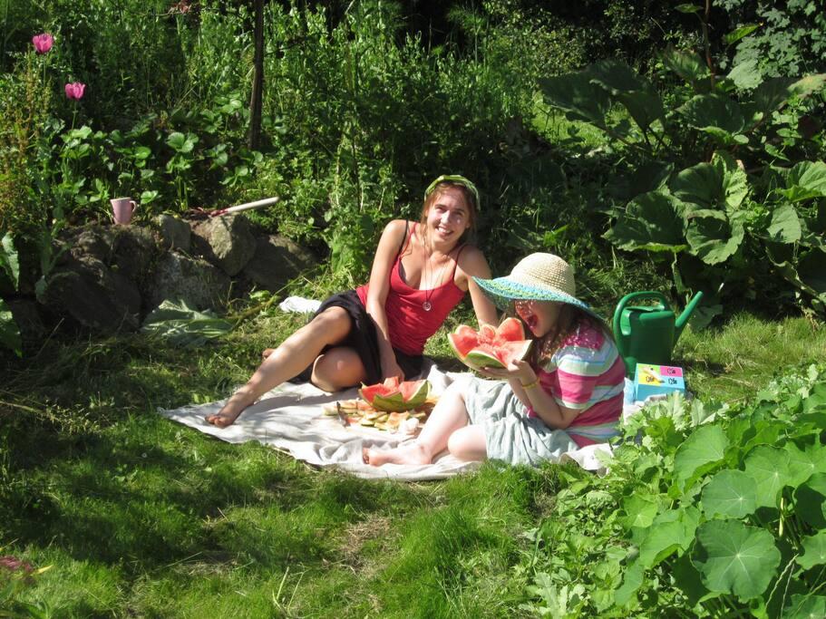 En lille skovtur i haven.