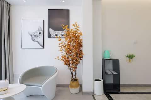 CBD购物中心附近网红现代轻奢风格全屋语音智能大床酒店式公寓