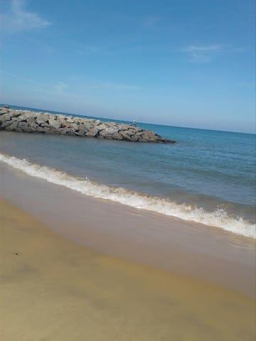 White Rose Beach Resort.  MARAWILA