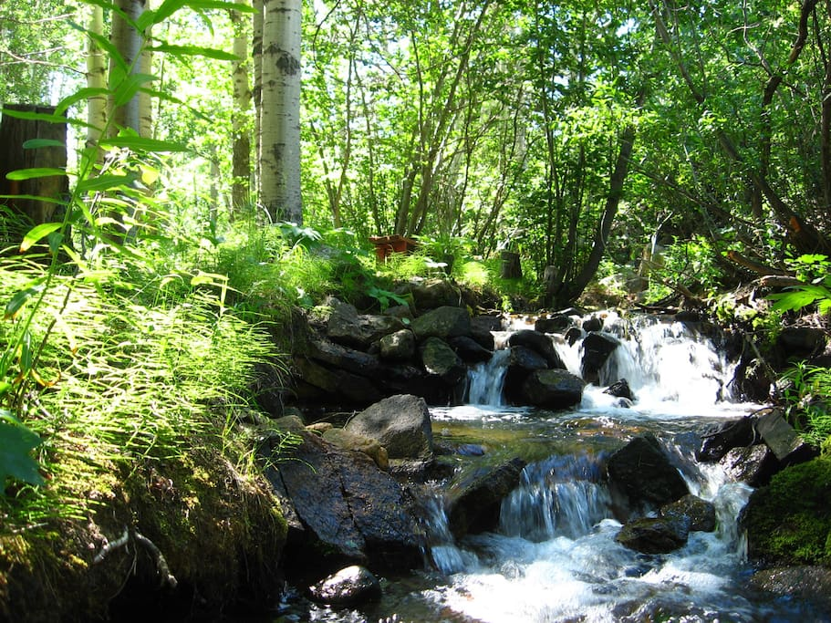 Your backyard...the creek!  Dip your toes in the water, read, draw or paint, visit or play....