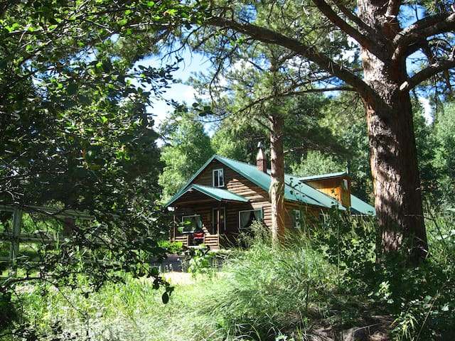 Cascading Creek Log Cabin - Allenspark