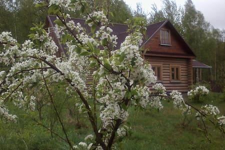 Усадьба в деревне Редькино