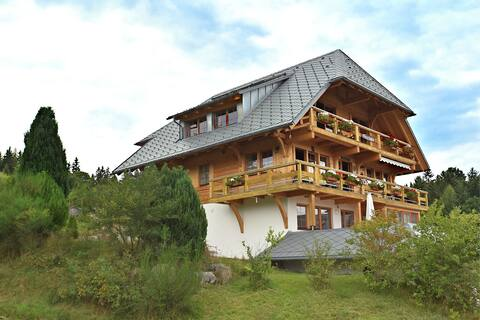 Lovely Apartment in Dachsberg-Urberg with Roof Terrace