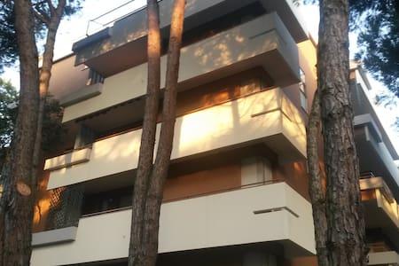 MARINA ROMEA Centro (dietro p.zza Torino) - Marina Romea - Lakás