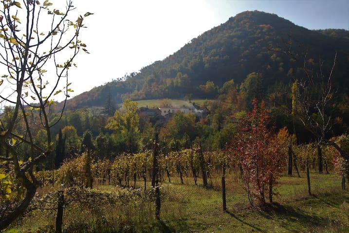 Casa in un incantevole borgo vicino a Bologna - Marzabotto