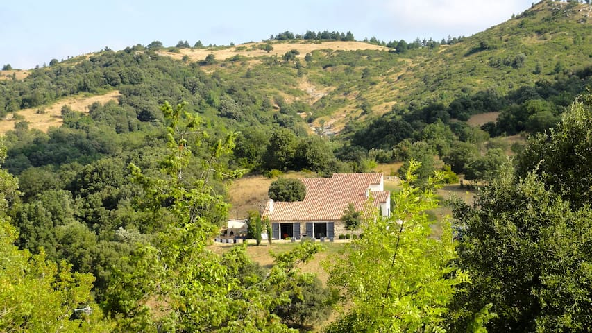 mas luxe piscine 18 km Carcassonne - Fajac-en-Val - House