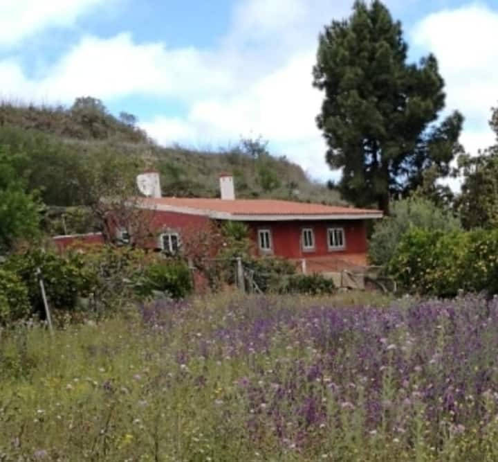 Casa rural  San Mateo 2