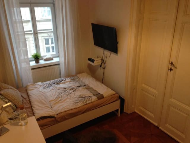 Room in the heart of Vienna!