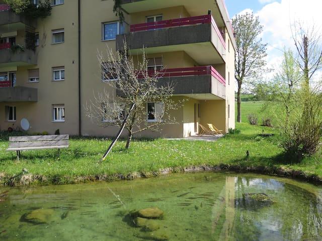Entspannen am Bach und Teich - Schönengrund - Apartamento