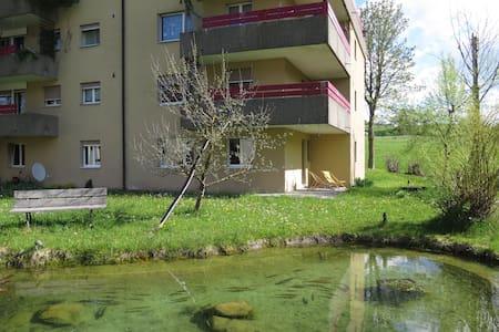 Entspannen am Bach und Teich - Schönengrund - Wohnung