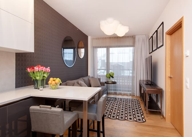 Brand new 1BR luxury apartment next to OLD TOWN